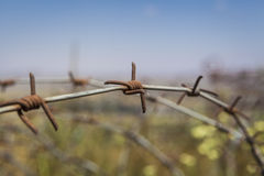 Old Barbed Wire Stock Photos