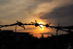 The old Barbed wire silhouette on sunset sky Royalty Free Stock Photography