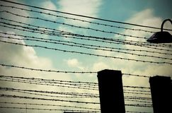 Old barbed wire to demarcate the prison camp Stock Photos