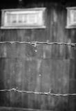 Old barbwire with spider web in front of concentration camp Royalty Free Stock Images