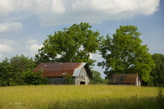 Old bard. Horizontal view of old barn with trees in background and field in foreground Royalty Free Stock Images