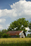 Old bard. Verticle view of old barn with trees in background and field in foreground Royalty Free Stock Image