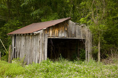 Old bard. Horizontal view of old barn with trees in background Stock Photo