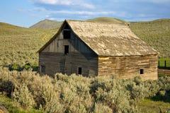 Old Barn. Old wooden barn amidst sagebrush Royalty Free Stock Photo