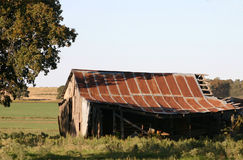 Old Barn. Old wooden barn with rusty tin roof, partly shaded by oak tree with pasture in background Stock Photos