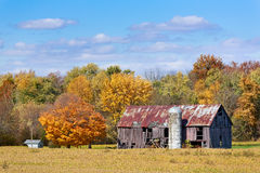Old Barn in Autumn. An old barn with silo stands between a soybean field and a colorful autumn wood in Midwestern America Stock Photos