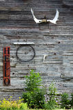 Old Barn Building Wall Antlers Sign for Hello and Green Growth Royalty Free Stock Images