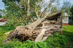Old Barn Damaged By Recent Hurricane Royalty Free Stock Photos