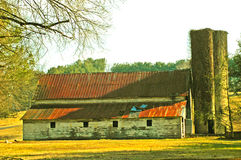 Old barn with dogs in evening light. Stock Image