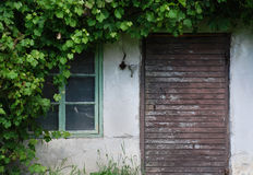 Old barn door Stock Images