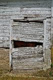 Old Barn Door is Rickety,Sagging, and Broken. An old white rickety barn door is in need of repair as it is sagging, broken, and missing several boards Royalty Free Stock Photography