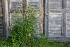 Old Barn Doors Royalty Free Stock Photos