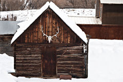 Old Barn with Elk Antlers in Winter Royalty Free Stock Images