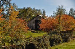 Old Barn in the fall Royalty Free Stock Photo