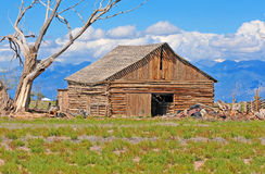 Old Barn on Farm Royalty Free Stock Image
