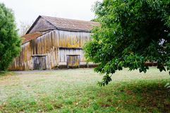 Old barn on farm. In the field royalty free stock photo