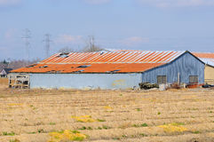 Old barn in a farm field Royalty Free Stock Images