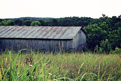 Old Barn. Old farmhouse barn with grown up field Royalty Free Stock Photography