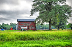 Old Barn and Farming Equipment. Sitting in the middle of some farmland next to a big tree with grazing goats and trees in the background Royalty Free Stock Image