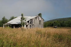 Old Barn in field. Grass field surrounding an old barn. Roof is falling in. Aged wood siding.  Fog drifting behind barn Stock Photography