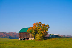 Old Barn in a Field. Autumn landscape with an old barn with green roof in a field Stock Images