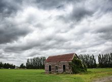 Old Barn in Field. A dilapidated barn covered in creepers in a field outside Greytown, New Zealand. A grey stormy sky lies above the building and Poplar trees Royalty Free Stock Photography