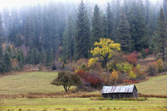Old barn in field on overcast day. Royalty Free Stock Images