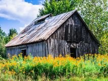 The old barn. This old barn is in a field surrounded by wild flowers. Photo taken this summer in the countryside Stock Photo