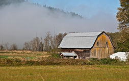Old Barn on Foggy Field Morning Royalty Free Stock Photos
