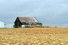 Old Barn by harvested corn field Stock Photos
