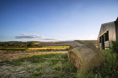 Old barn and hay bales in Summer countryside landscape Stock Images