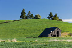 Old barn by hill. Royalty Free Stock Images
