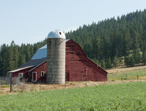 Old barn in Idaho Stock Images