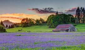 Old Barn In The Willamette Valley Royalty Free Stock Photography