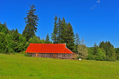 Old barn in a meadow Royalty Free Stock Photography