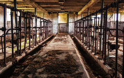 Old Barn Milking Stalls - 2. The legendary Sugardale barn in rural southern Minnesota Stock Images