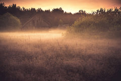 Old barn in misty field. Old barn or shed in misty foggy field at twilight royalty free stock photo
