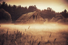 Old barn in misty field Royalty Free Stock Images