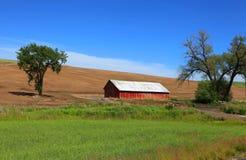 Old barn near Pullman Royalty Free Stock Image