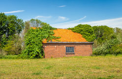 Old barn with orange tiled roof overgrown with wild plants Stock Photos