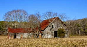 Old Barn with Red Roof Stock Images