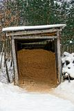 Old barn with sawdust in the winter yard. Ancient structure of boards in the woods royalty free stock photography