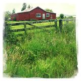 Old barn scene Royalty Free Stock Images