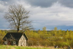 Old barn scene in western Russia.  rustic old farm building. old rustic barn. Pskov oblast, Northwest part of Russia, Europe. Stock Photo