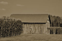 Old Barn in Sephia Royalty Free Stock Photos