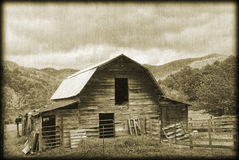 Old Barn Sepia. An old barn with an antique, grunge treatment Royalty Free Stock Photography
