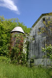 Old Barn & Silo - Summer Royalty Free Stock Image