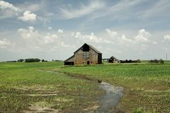 Old barn sitting isolated in an open corn field. Old isolated Barn sitting among new crop corn fields with water threatening royalty free stock images