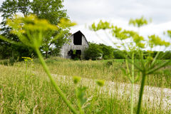 Old Barn. Sitting in a pasture in rural Missouri Royalty Free Stock Photo