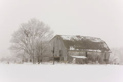Old barn in snow and fog. Old gray barn in winter with snow and fog color image but looks almost black and white Royalty Free Stock Image